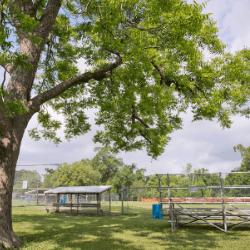 Sports and Recreation in St. Landry Parish, Louisiana