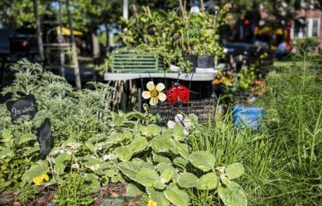 Celebration of Herbs & Gardens in Sunset, Louisiana