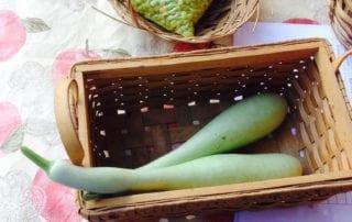 Eunice Farmers Market Squash & Peas in Eunice, Louisiana