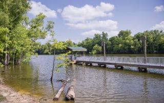 Sherburne Wildlife Management Area in Krotz Springs, Louisiana