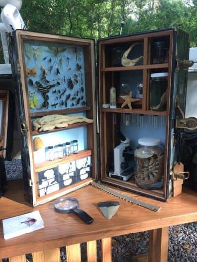 Atelier de la Nature, Arnaudville, Louisiana